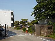 桜台小学校 約880m(徒歩11分)