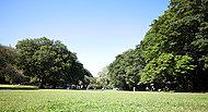 都立砧公園 約880m(徒歩11分)※平成27年10月撮影