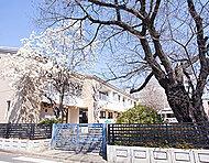 かきの木幼稚園 約510m(徒歩7分)※1