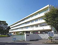 志木第二中学校 約950m(徒歩12分)※1
