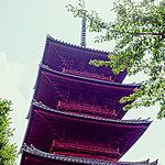 池上本門寺 約200m(徒歩3分)