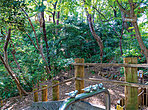 大坂ふれあいの森 約140m(徒歩2分)