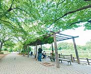 白幡緑道 約490m(徒歩7分)