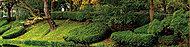 盛岡城跡公園(平成25年10月撮影) 約590m