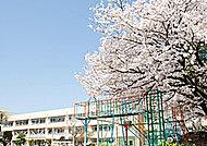 市立大江小学校 徒歩7分/約550m