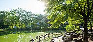 菊名池公園 徒歩18分/約1,370m/自転車約6分