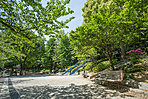 江戸川公園 徒歩3分/約220m