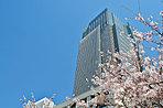 東京ミッドタウン 約1,190m(平成29年4月撮影)