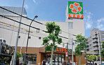 ライフ新大塚店 約320m(徒歩4分)