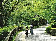 神奈川県立三ツ池公園 約3,940m(徒歩49分)