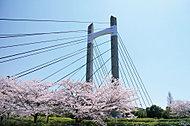 春海橋公園 約1,600m(徒歩19分)