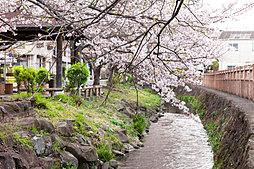 クレストレジデンス武蔵新城