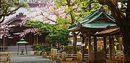 駒繋神社 約530m(徒歩7分)