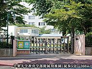 千葉大学教育学部附属幼稚園 約360m(徒歩5分)