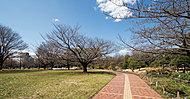 亀戸中央公園 約1,350m(徒歩17分)