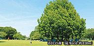 市民の森 約430m(徒歩6分)