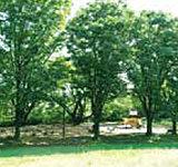見晴公園 約480m(徒歩6分)