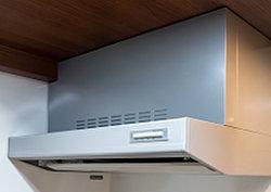 レンジフードの吸い込み風速が、整流板によって加速されるため、煙を素早く吸収します。(タイプにより形状やサイズが異なります)