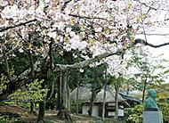 平尾山荘跡 約780m(徒歩10分)