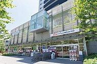 オーケー青物横丁店 約380m(徒歩5分)