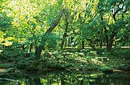 都立林試の森公園 約1,280m(徒歩16分)