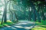 県立舞子公園(周辺環境写真)