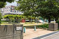 栄町公園 約60m(徒歩1分)