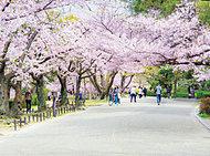 夙川公園 約50m(徒歩1分)