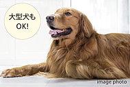 愛犬と一緒に暮らせるマンションです。建物内にペットの足洗い場を設けています。※管理規約は係員にお尋ねください。