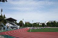 朝霞市立第八小学校 約780m(徒歩10分)
