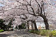 小平グリーンロード親水公園 ※撮影日:2015年4月 約1,300m(徒歩17分)