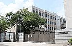 高松市立中央小学校 約230m(徒歩3分)