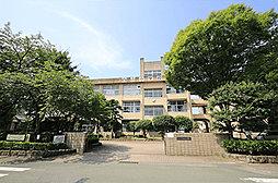 熊本市立白山小学校 約690m(徒歩9分)
