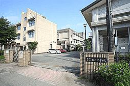 熊本市立白川中学校 約1,810m(徒歩23分)