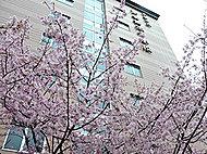 京都市立 京都御池中学校 約220m(徒歩3分)