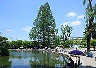赤塚溜池公園 約1,480m(徒歩19分)
