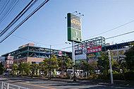 SHOP市川 約850m(徒歩11分)