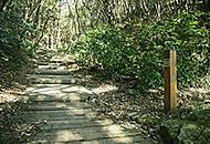 鴻巣山遊歩道 約15m(徒歩1分)