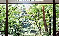 都立殿ヶ谷戸庭園 約630m(徒歩8分)