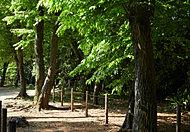 津田公園 約680m(徒歩9分)