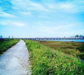 淀川河川敷 約630m(徒歩8分)