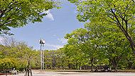 茅ヶ崎中央公園 約1,210m(徒歩16分)