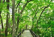 戸塚中台公園 約1,060m(徒歩14分)