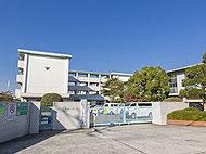 引野小学校 約390m(徒歩5分)