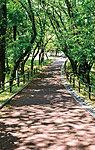 明野緑地公園 約320m(徒歩4分)
