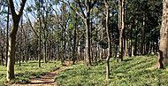 鶴間公園 約1,270m(徒歩16分)