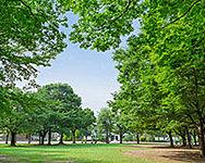 都立東綾瀬公園 約1,140m(徒歩15分)