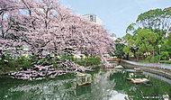 仙台堀川公園 約45m(徒歩1分)