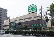 サミットストア 野沢龍雲寺店 約570m(徒歩8分)