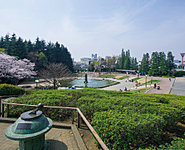 世田谷公園 約1,460m(自転車6分)